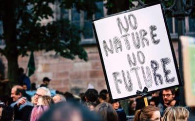 GRÜNE fordern Klimaschutzmanager*in für den Landkreis