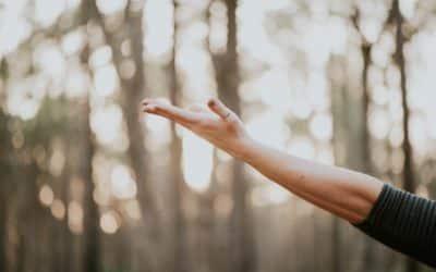 Yoga für Senioren im Wald